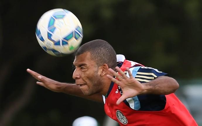 Amaral Palmeiras (Foto: Cesar Greco/Ag Palmeiras/Divulgação)