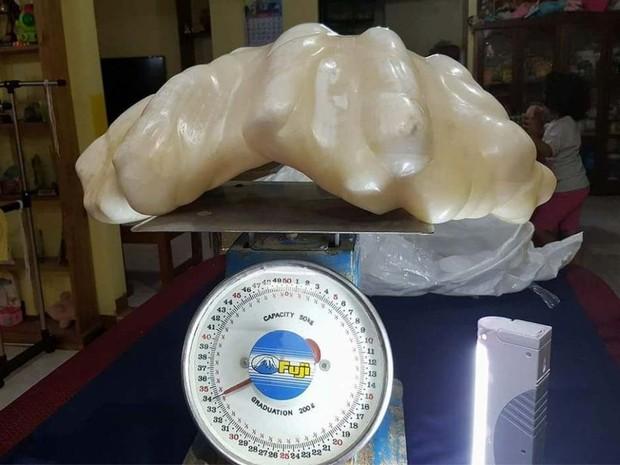 Pérola gigante de 34 kg encontrada nas Filipinas pode ser a maior do mundo (Foto: Reprodução/ Facebook/ Aileen Cynthia Maggay-Amurao)