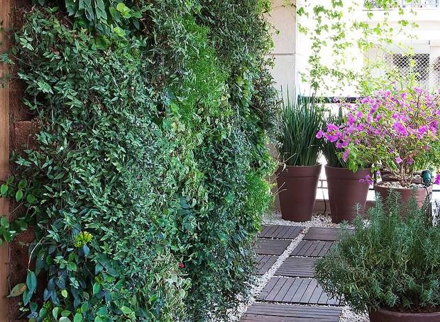 jardim-vertical-suspenso-paisagista-Roberto-Riscala-painel-de-madeira-pínus (Foto: Célia Weiss/Editora Globo)