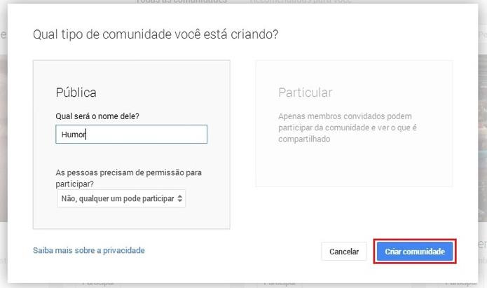Defina um título, selecione se sua comunidade será Pública ou Particular e configure permissões antes de terminar o processo (Foto: Reprodução/Paulo Figueiredo)