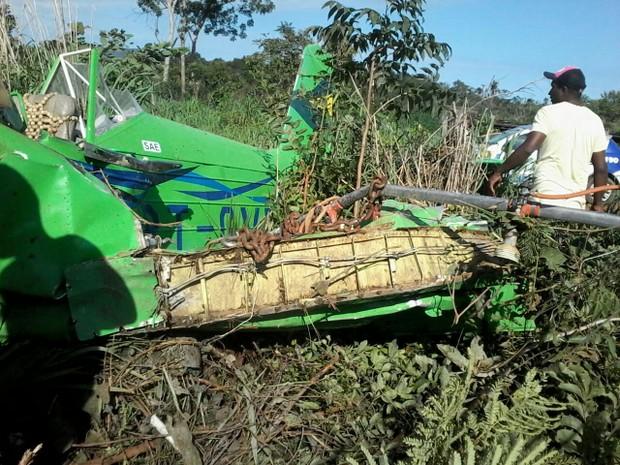 Avião teria batido em uma árvore antes de cair (Foto: Divulgação/Polícia Militar)