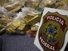 Polícia apreende 268 quilos de maconha na Região de Curitiba