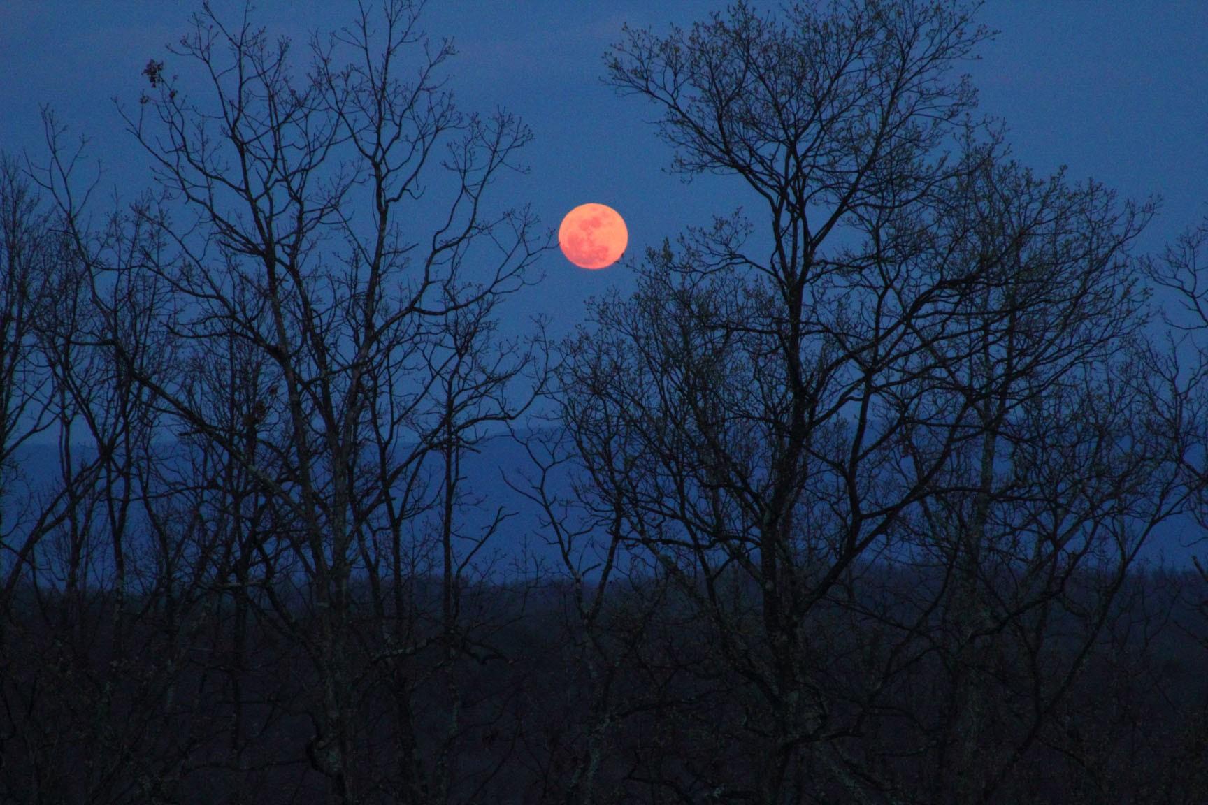 fenômeno da lua de sangue inspira misticismo (Foto: JosMetadi/flickr/creative commons)