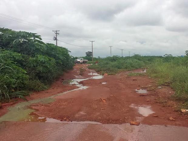 Estrada de barro e mato alto no Setor de Indústrias de Ceilândia (Foto: Isabella Formiga/G1)