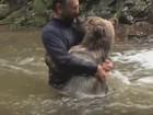 Homem se arrisca e é filmado brincando com urso em rio