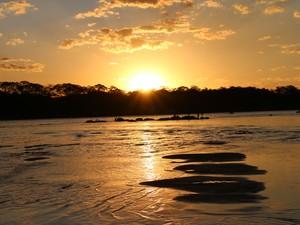 Praia da Tartaruga - Peixe (Foto: Ademir dos Anjos/Arquivo Pessoal)
