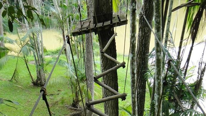 Estação de Arvorismo no Parque Natural de Porto Velho (Foto: Amazônia Adventure/  Divulgação)