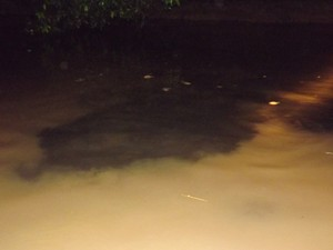 Mancha escura no rio representa resíduos de produtos químicos (Foto: Luiz Pitanguy/Arquivo Pessoal)