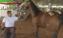 Após ficar paraplégico, apaixonado por cavalos vira treinador: 'Me motiva' (Reprodução/ TV TEM)