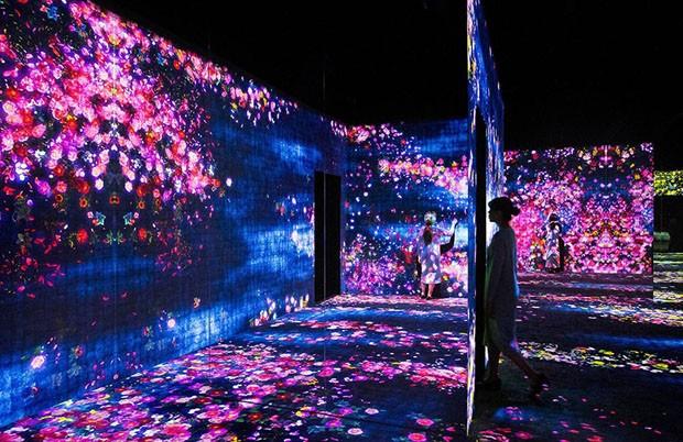 teamlab-pequim-flores (Foto: Divulgação)