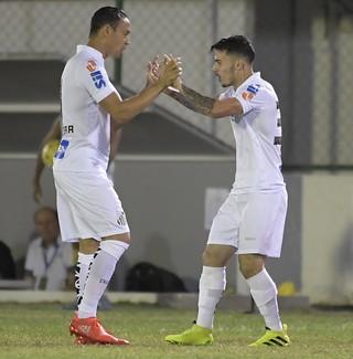 Zeca gol Botafogo x Santos (Foto: Agência Estado)