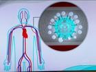Vacina da gripe demora duas semanas para fazer efeito, diz médico