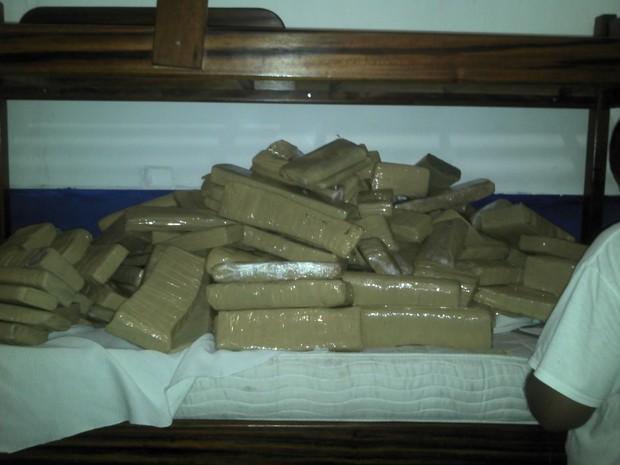 Drogas apreendidas (Foto: BPRV)
