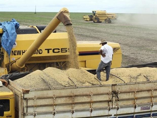 Caminhão é carregado com soja em fazenda na cidade de Primavera do Leste (Foto: REUTERS/Paulo Whitaker)