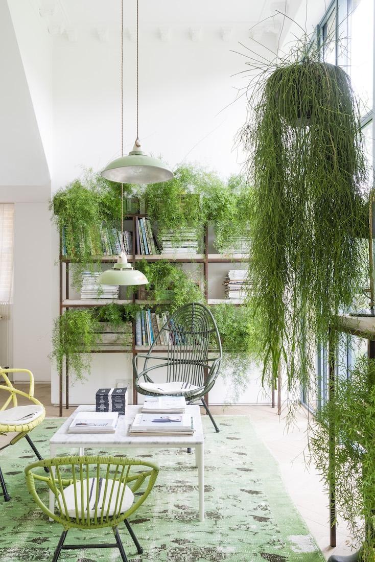 Décor do dia: sala greenery e cheia de plantas (Foto: reprodução)