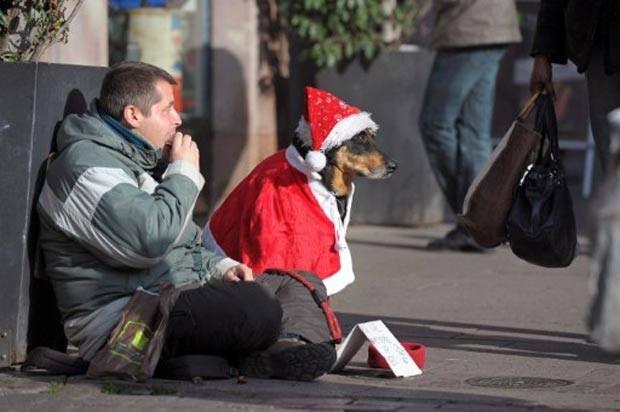Em novembro de 2011, um homem colocou uma fantasia de Papai Noel em seu cão de estimação enquanto pedia esmola na cidade de Estrasburgo, na França. (Foto: Frederick Florin/AFP)