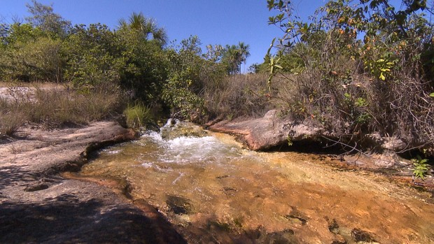 Parques preservam natureza típica