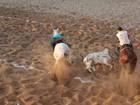 Parque de vaquejada na BA firma TAC com MP para reduzir danos a animais