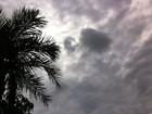 Chuva e temperatura elevada continuam em MS na quinta-feira