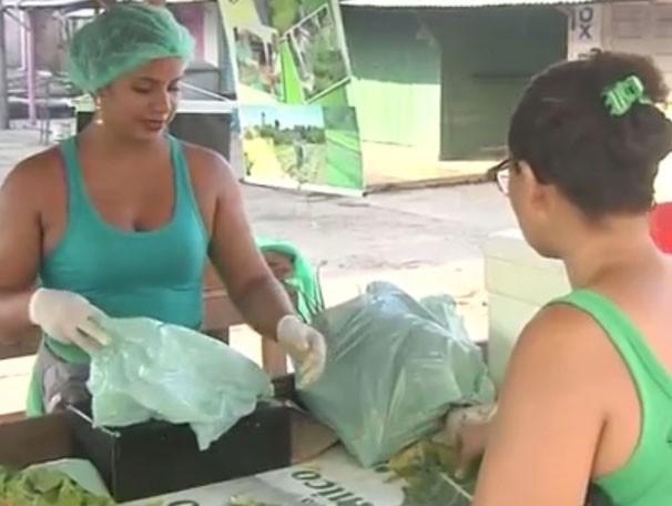 Mídia Social: alternativa para o fortalecimento da relação com clientes e outros agricultores. (Foto: Mirian Menezes/ TV Tapajós)