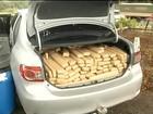 Dupla é presa com drogas após perseguição policial em rodovia