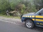 Carro colide em capivara e 2 homens morrem em Dom Pedrito, no RS