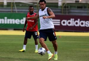 Fred treino Flu (Foto: Nelson Perez / Fluminense)