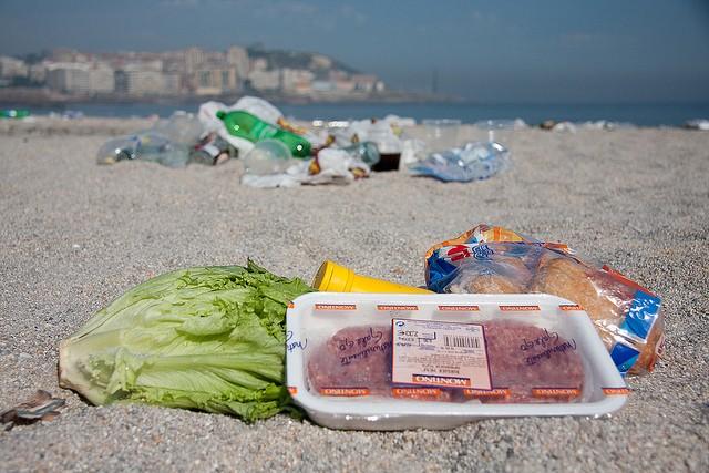 Desperdício: valores éticos custarão caro neste ano (Foto: Visualhunt )
