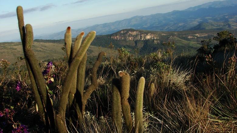 parque-estadual--ibitipoca-mg-minas-gerais (Foto: Flickr/ Marina Dutra Miranda)