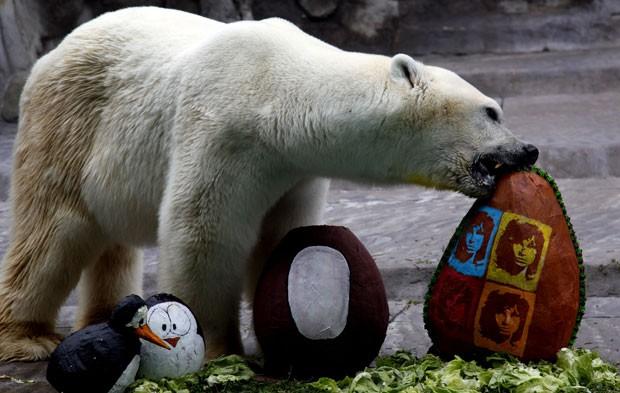 O urso polar Winner, em foto de abril deste ano (Foto: AP/Natasha Pisarenko)