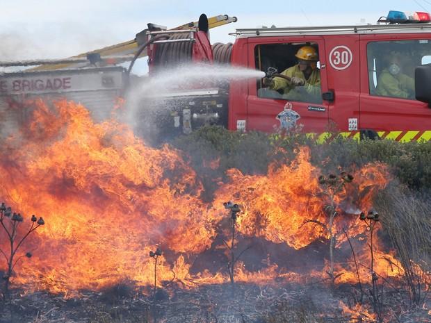 Bombeiros apagam fogo em grana em Melbourne, na Austrália  (Foto: Reuters)
