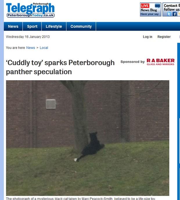 Bicho de pelúcia foi confundido com uma pantera (Foto: Reprodução)