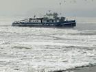 Frio congela o Danúbio; número de mortos na Europa chega a 590