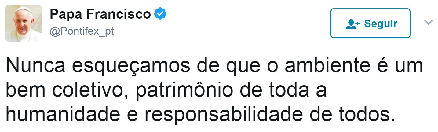 tuite-papa-ambiente (Foto: Reprodução/Twitter)
