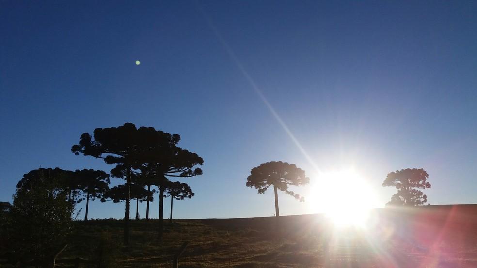 Apesar do frio, sol deve predominar ao longo do dia no Paraná  (Foto: Celmir Oliveira Telles/Arquivo pessoal)
