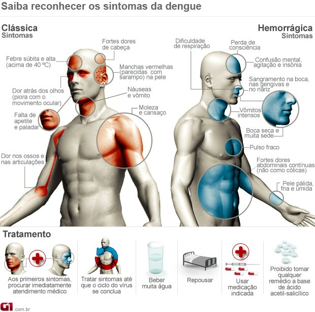 Saiba quais são os sintomas da dengue (Foto: Editoria de Arte G1)