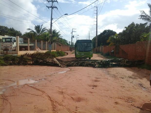 Moradores usaram galhos e pneus para bloquearem Avenida Nossa Senhora da Vitória (Foto: Alessandra Rodrigues/Mirante AM)