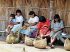 Carboidrato e sedentarismo deixam índios diabéticos em MT, diz pesquisa
