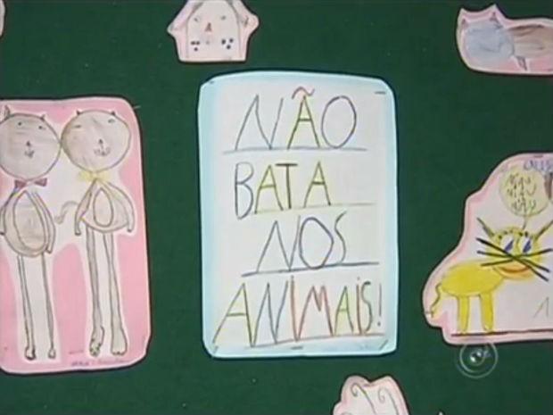 São dobraduras, desenhos e frases que despertam o cuidado (Foto: Reprodução/TV TEM)