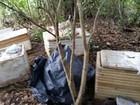 Homem é preso com 340 kg de pescado no Pantanal de MS