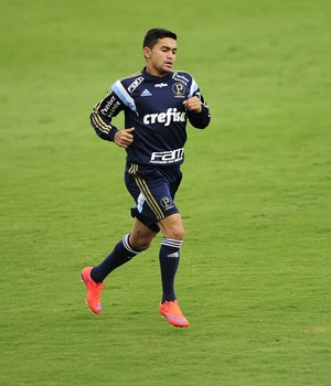 Dudu Palmeiras (Foto: Marcos Ribolli)
