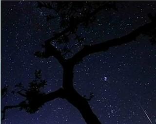 Chuva de meteoros foi vista na Grécia também (Foto: Reprodução RJTV 1ª Edição)