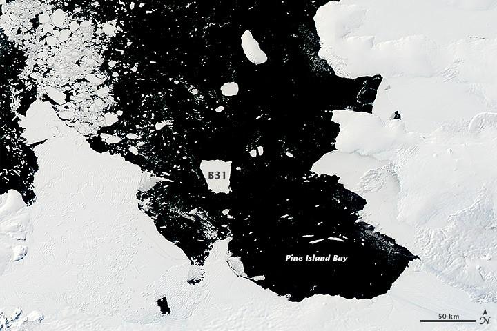 Iceberg gigante se separa da Antártida