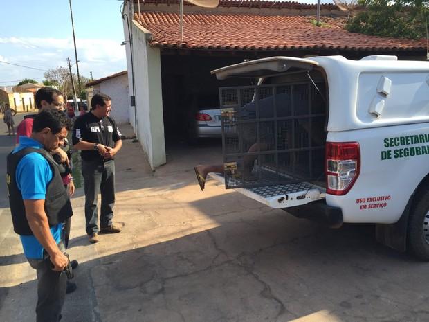 Homem suspeito de chacina em Madeiro é transferido para Teresina (Foto: Divulgação/Polícia Civil)