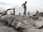 Reunião avalia impactos em áreas afetadas por naufrágio em Barcarena
