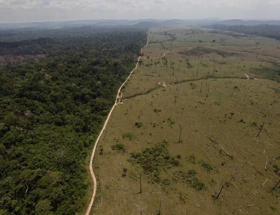 Área de floresta ao lado de área desmatada em Novo Progresso, no Pará (Foto: Andre Penner/AP)