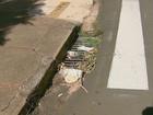 Lixo nos bueiros e vias aumenta o risco de enchentes em São Carlos, SP