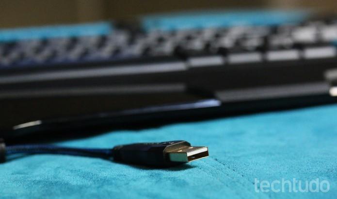 Ambos usam entrada USB do computador para se conectar (Foto: Luciana Maline/TechTudo)