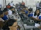 Trabalhadores devem fazer cadastro no 'Chapéu de Palha' no Sertão de PE