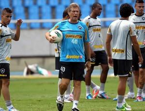 Oswaldo de Oliveira treino Botafogo (Foto: Cezar Loureiro / Agência o Globo)